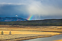 Rainbow in valley with river in foreeground in Yellowstone National Park