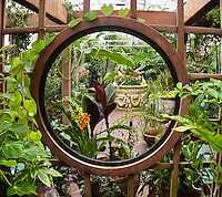 Porthole view into the Potted Plants Gallery at San Francico Conservatory of Flowers