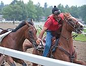 Robby Rios, outrider catches loose horse, loose horse, Chris Englehart, Saratoga, Saratoga Race Course, Oklahoma training track, rider catches loose horse, Tod Marks, Todd Marks, Tod Marks photo, Todd Marks Photo, amazing catch, rider grabs horse by nose