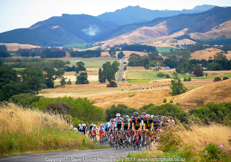 The peleton climbs Langdale Rd during the NZ Cycle Classic stage two of the UCI Oceania Tour in Wairarapa, New Zealand on Monday, 23 January 2017. Photo: Dave Lintott / lintottphoto.co.nz
