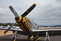 North American Aviation P-51D Mustang Fighter Airplane, Arlington Fly-In 2015, WA, USA.