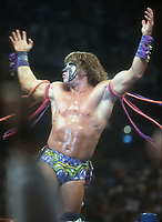 Wrestling Warriors - The '80s and '90s