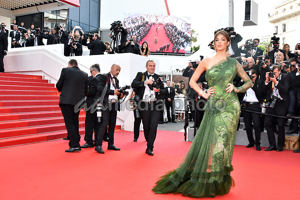 "24 May 2017 - Cannes, France - Iris Mittenaere. ""The Beguiled"" Premiere during the 70th Cannes Film Festival. Photo Credit: MichaelTimm/face to face/AdMedia"