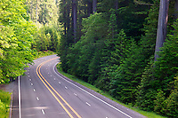 The Redwood Highway or Highway 101 where it is crossed by the Avenue of the Giants, Humboldt Redwoods State Park, California