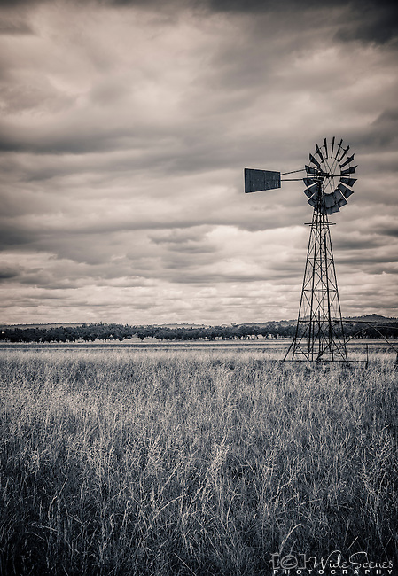 A lonely windmill stands in pastures west of Quirindi in the New England region of New South Wales in Australia. This area primarily produces sunflowers and sorghum.
