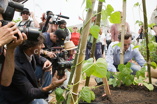 "San Francisco Mayor Gavin Newsom with the media at Community Planting Day (July 12, 2008) of the Slow Food Nation Victory Garden at San Francisco's Civic Center. The garden project ""demonstrates the potential of a truly local agriculture practice that unites and promotes Bay Area urban gardening organizations, while producing high quality food for those in need.""* The garden is planted on the same site as the post-World War II garden sixty years ago. The food will be grown over a period of two months, harvested, and donated to people in need..*slowfoodnation.org"