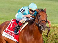 08-26-17 Ballston Spa Stakes (2) (Saratoga)