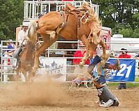 Orillia Rodeo'11