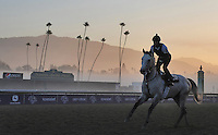 Scenes from morning workouts for the upcoming Breeders Cup at Santa Anita Park on October 31, 2012.