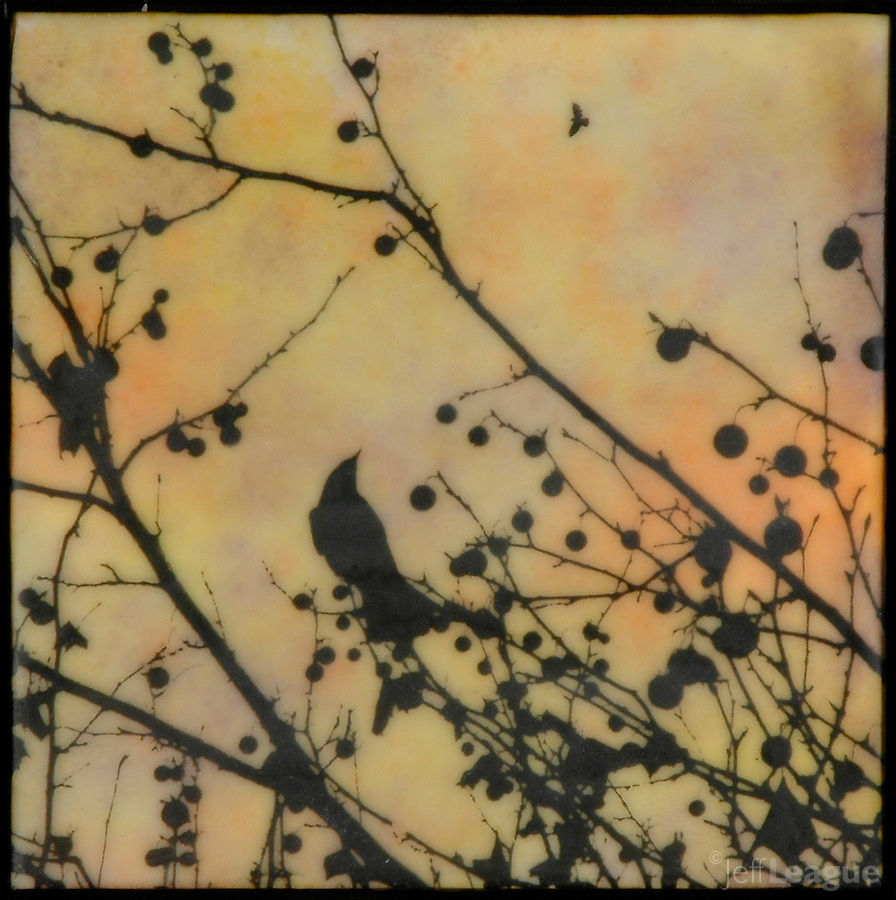 Photo transfer over encaustic painting of branches with berries and birds
