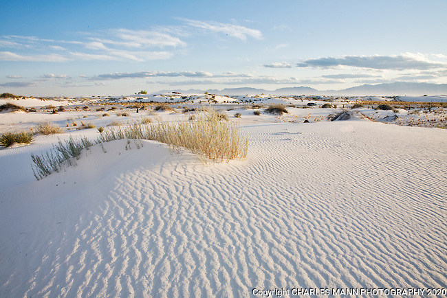 White Sands National Monument near Alamogordo, New Mexico, is a special place and can at times can seem like a unique world.