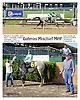 Dahmas Mischief MHF winning at Delaware Park racetrack on 6/2/14