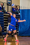 27 October 2013: Yeshiva University Maccabee Outside Hitter Marjorie Rasinovsky, a Freshman from Sao Paulo, Brazil, in action against the College of Mount Saint Vincent Dolphins at the College of Mount Saint Vincent in Riverdale, NY. The Dolphins defeated the Maccabees 3-0 in NCAA women's volleyball play. Mandatory Credit: Ed Wolfstein Photo *** RAW (NEF) Image File Available ***