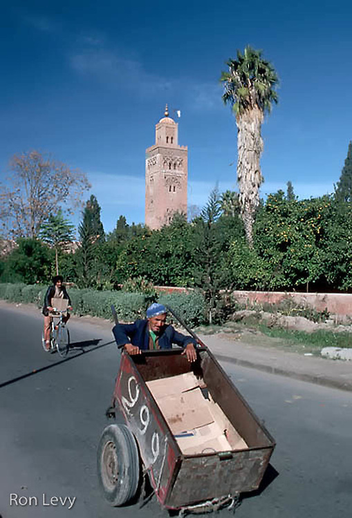 Man pushing cart, Morocco, Africa