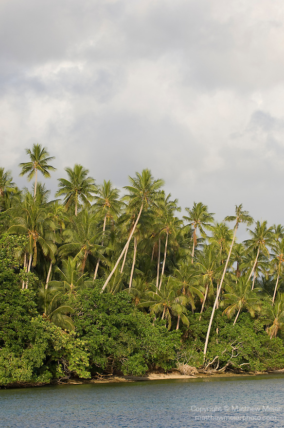 Milne Bay, Papua New Guinea; sunrise, palm trees viewed from Tawali Resort , Copyright © Matthew Meier, matthewmeierphoto.com
