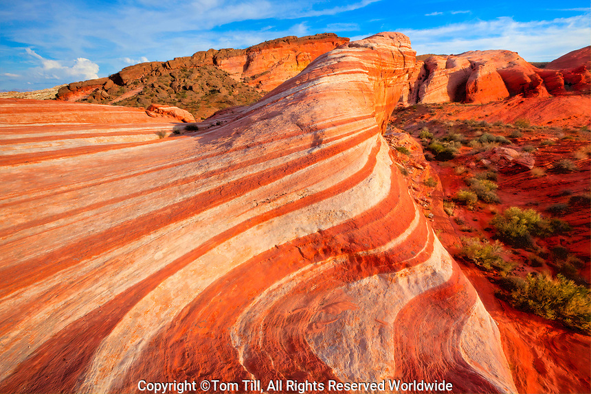 Red Wave in sandstone, Valley of Fire State Park, Nevada  Aztec sandstone