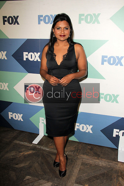 Mindy Kaling<br /> at the Fox All-Star Summer 2013 TCA Party, Soho House, West Hollywood, CA 08-01-13<br /> David Edwards/Dailyceleb.com 818-249-4998