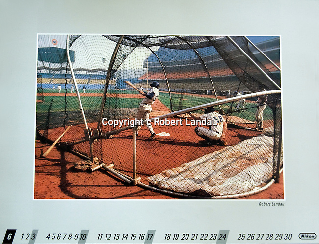 Dodger Stadium batting cage for Nikon Calendar.