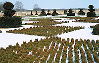 Topiary hedges clipped in the shape of chess pieces are scattered across a large chessboard in the snow-covered sunken garden