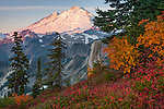 Mount Baker-Snoqualmie National Forest, WA: Mount Baker from Artists Ridge TraiL, at sunrise with huckleberries and mountain ash in fall color.