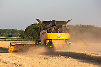 Harvesting Winter Barley in the late evening sun<br /> &copy;Tim Scrivener Photographer 07850 303986<br />      ....Covering Agriculture In The UK....