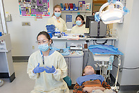 "Occidental College students Rachel Safran '13, a kinesiology major from Murrieta (yellow scrubs, blond hair) and Allyson Fukuyama '13, a history major from Maui (yellow scrubs, dark hair) observe observe dental work at Children's Hospital Los Angeles, Jan. 18, 2013.<br /> Made possible by the Occidental College Office of Pre-Health Advising (OPHA) in the Hameetman Career Center, 10 Oxy pre-meds spent the last two weeks of their winter break ""shadowing"" doctors at Children's Hospital Los Angeles, a teaching hospital run by USC's Keck School of Medicine, to get a better sense of what the practice of medicine entails. Their packed 10 days, which began as early as 7:30 a.m., included rotations in 10 different areas: general pediatrics, cardiology, genetics, rehabilitation, pulmonology, gastroenterology, plastic surgery, rheumatology, hematology and dentistry. Teams of two observed surgeries and accompanied physicians on their clinical rounds in a different department each day.<br /> (Photo by Marc Campos, Occidental College Photographer)"