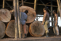 Logs at sawmill in Pucallpa, Peru