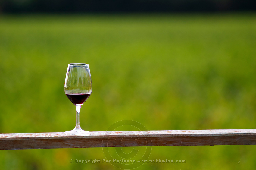 Wine glass. Chateau Paloumey, Haut Medoc, Bordeaux, France.