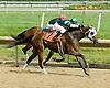 Tizsilk winning at Delaware Park on 7/28/09
