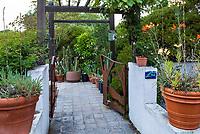 Entry gate and path into Pollinator Habitat side yard in Judy Adler Garden, Walnut Creek, California