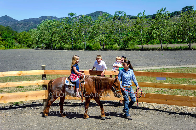 Pony rides at Avila Valley Barn, San Luis Obispo County, California