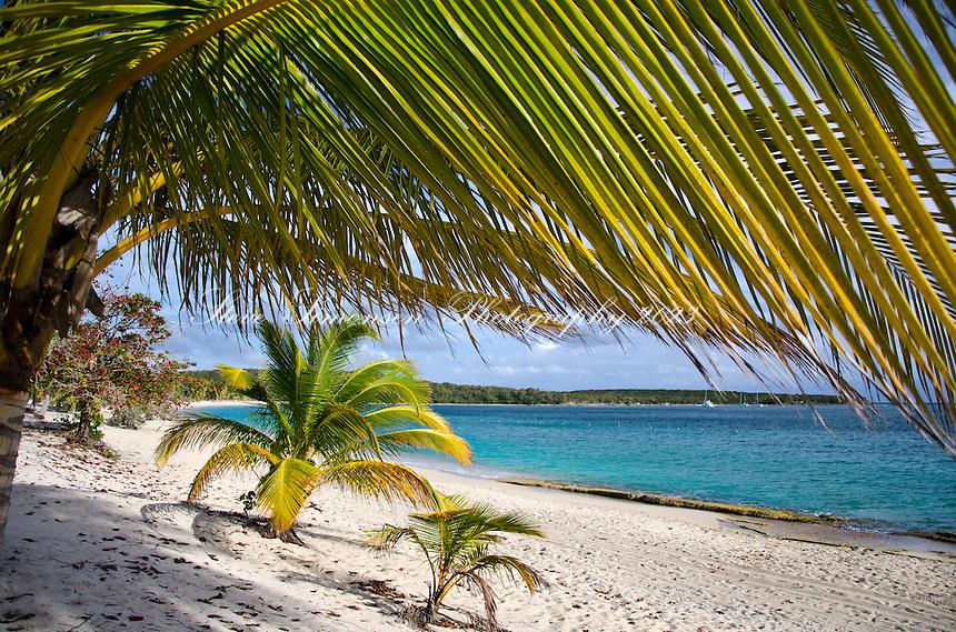 Sun Bay Vieques.Puerto Rico