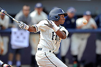3 March 2013:  FIU outfielder Tyler Hibbert (11) bats in the ninth inning as the University of Mississippi Ole Miss Rebels defeated the FIU Golden Panthers, 8-1, at University Park Stadium in Miami, Florida.