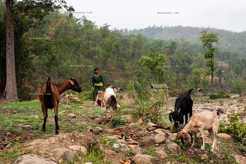 General views and village life around the remote village of Dungi Khola, near Chhinchu, Surkhet district, Western Nepal, on 1st July 2012. In Surkhet, Save the Children partners with Safer Society, a local NGO which advocates for child rights and against child marriage.  Photo by Suzanne Lee for Save The Children UK