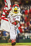 20 May 2014: Washington Nationals Mascot Screech carries a flag in victory after a game against the Cincinnati Reds at Nationals Park in Washington, DC. The Nationals defeated the Reds 9-4 to take the second game of their 3-game series. Mandatory Credit: Ed Wolfstein Photo *** RAW (NEF) Image File Available ***