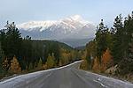 PAVED ROAD IN  JASPER NATIONAL PARK, ALBERTA, CANADA,