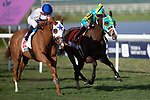 HALLANDALE BEACH, FL - JANUARY 25: Spooky Channel, #11, ridden by jockey Julien Leparoux, wins the W.L. McKnight Stakes on January 25, 2020 at Gulfstream Park in Hallandale Beach, Florida. Kaz Ishida/Eclipse Sportswire/CSM
