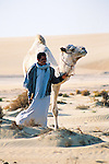 While Mohammed's family no longer traded salt, they still kept a herd of camels in the desert. It took us three hours to trek across the sands to take the male camel, usually tethered at the house, to mate with the females.