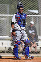March 19, 2010:  Catcher Juan Torres of the New York Mets organization during Spring Training at the Roger Dean Stadium Complex in Jupiter, FL.  Photo By Mike Janes/Four Seam Images
