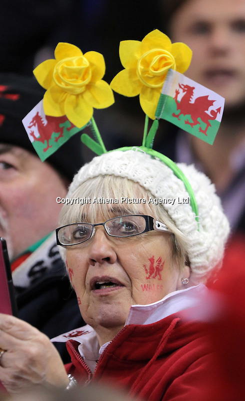 A Wales supporter wearing a daffodil hat before the Wales v France, 2016 RBS 6 Nations Championship, at the Principality Stadium, Cardiff, Wales, UK