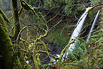 North Falls, Silver Falls State Park, Oregon