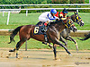 Fantasmagorico at Delaware Park on 8/11/15