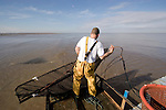 Southport Shrimper