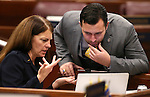 Assembly Republicans Shelly Shelton and Stephen Silberkraus work on the Assembly floor at the Legislative Building in Carson City, Nev., on Friday, Feb. 13, 2015. <br /> Photo by Cathleen Allison