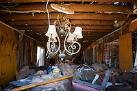 The living room and dining room of a home in the Lakeview area that suffered major damage due to Hurricane Katrina flooding in New Orleans, Louisiana. Many of these homes' interiors like this one remain untouched; floors are covered in flood debris and rubble while the walls and surfaces are still scab-covered layers of mold.