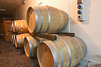 Wooden barrels for aging the wine in the winery Bodega Carlos Pizzorno Winery, Canelon Chico, Canelones, Uruguay, South America