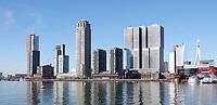 Nederland - Rotterdam -  2019. De Rijnhaven. Hoogbouw op de Wilhelminapier.    Foto Berlinda van Dam / Hollandse Hoogte