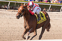 HALLANDALE BEACH, FL - FEBRUARY 04: Javier Castellano gets Favorable Outcome across the finish line first in the Swale Stakes (G2) at Gulfstream Park. (Photo by Arron Haggart/Eclipse Sportswire/Getty Images