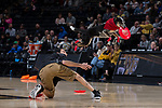 Frisbee catching dogs entertain the fans during halftime of the ACC men's basketball game between the Georgia Tech Yellow Jackets and the Wake Forest Demon Deacons at the LJVM Coliseum on February 14, 2018 in Winston-Salem, North Carolina.  The Demon Deacons defeated the Yellow Jackets 79-62.  (Brian Westerholt/Sports On Film)