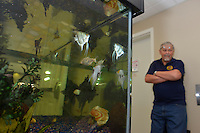 The Sarnia Aquarium Club president Jack VanderAa looks at his collection of Discus from the Amazon.